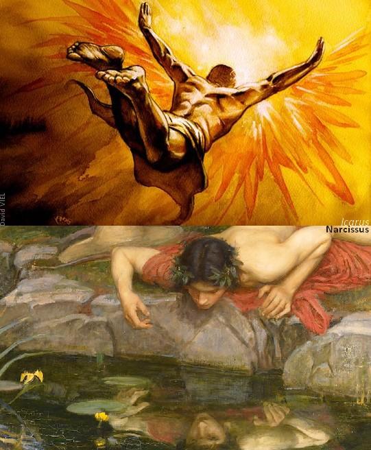 Narcissus Icarus