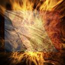 image l'identité française en sursis